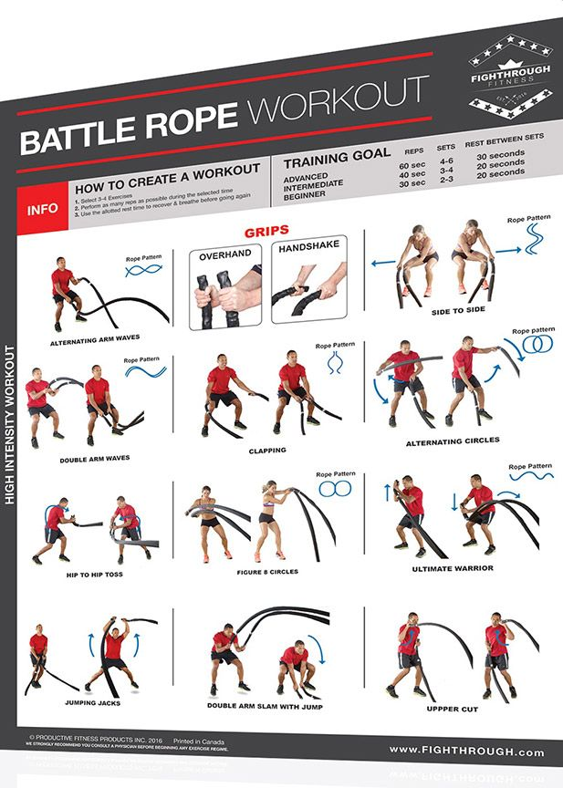the human trainer exercise chart pdf