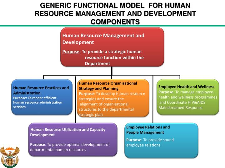 functions of human resource management department pdf