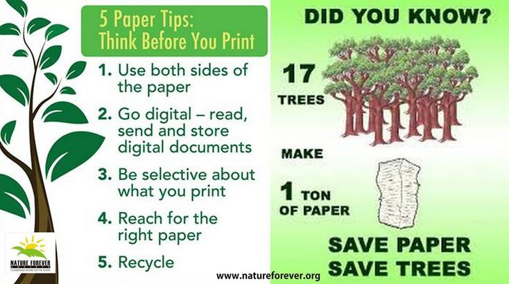 save our environment essay pdf