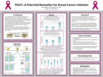 what is breast cancer pdf